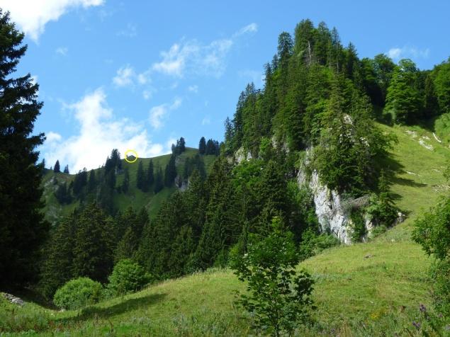 Foto: Manfred Karl / Wandertour / Gröhrkopf, 1562 m / Im gelben Kreis der unscheinbare Gipfel / 22.10.2019 19:36:22