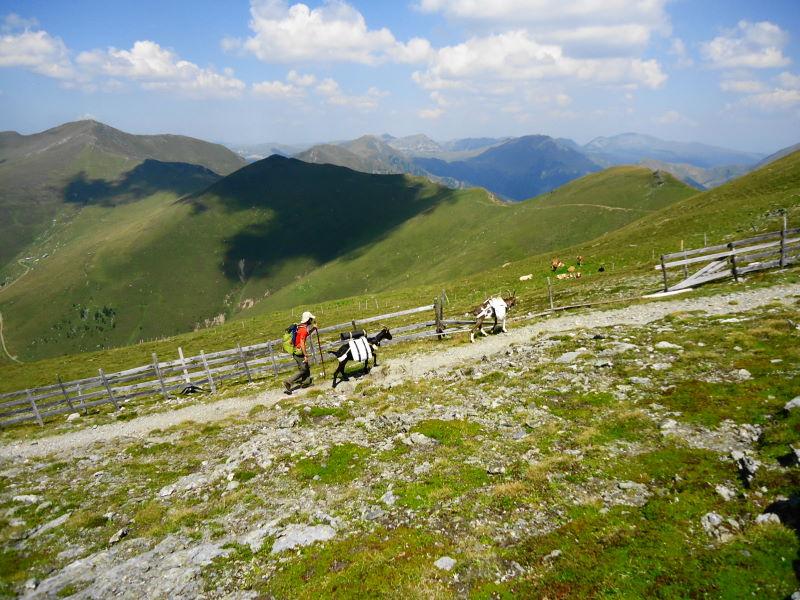 Foto: Günter Siegl / Klettersteigtour / Falken Klettersteig (D) / 07.09.2015 20:30:28