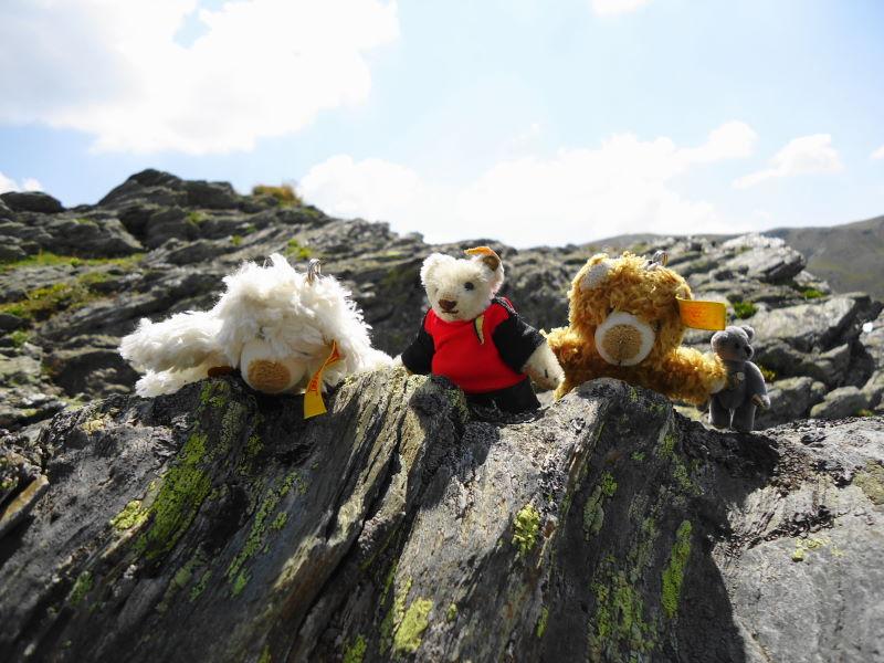 Foto: Günter Siegl / Klettersteigtour / Falken Klettersteig (D) / Die Bärenbande auf Lauer / 07.09.2015 20:30:20