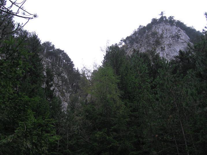 Foto: Andreas Koller / Klettersteigtour / Auf dem Naturfreundesteig durch die Kleine Klause (1002m) / 17.10.2010 17:49:57