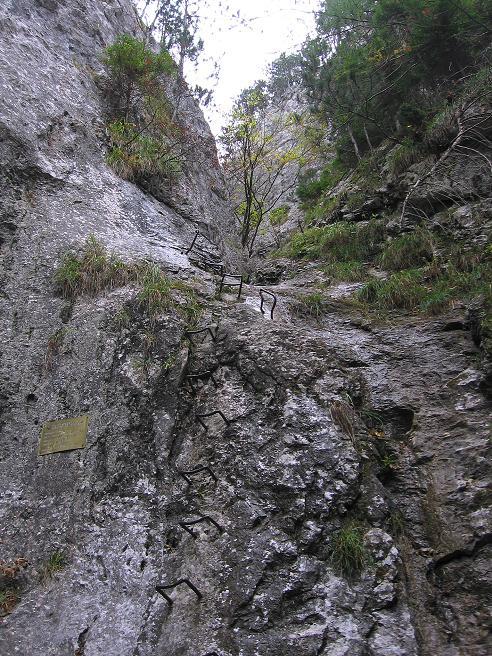 Foto: Andreas Koller / Klettersteigtour / Auf dem Naturfreundesteig durch die Kleine Klause (1002m) / Der Einstieg / 17.10.2010 17:49:09
