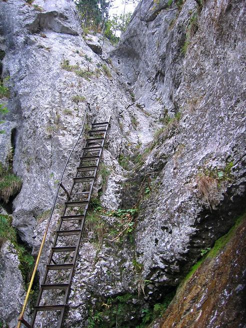 Foto: Andreas Koller / Klettersteigtour / Auf dem Naturfreundesteig durch die Kleine Klause (1002m) / 17.10.2010 17:47:29