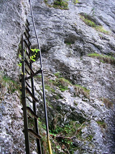 Foto: Andreas Koller / Klettersteigtour / Auf dem Naturfreundesteig durch die Kleine Klause (1002m) / 17.10.2010 17:47:21