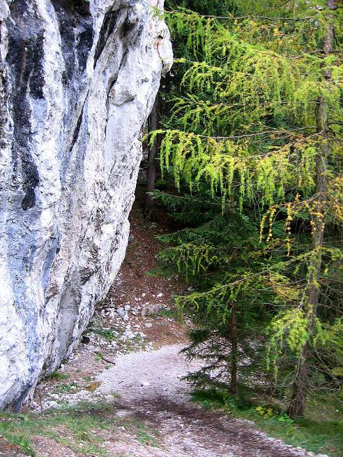 Foto: Andreas Koller / Klettersteigtour / Auf dem Naturfreundesteig durch die Kleine Klause (1002m) / Zurück bei der Einstiegswand / 17.10.2010 17:43:56