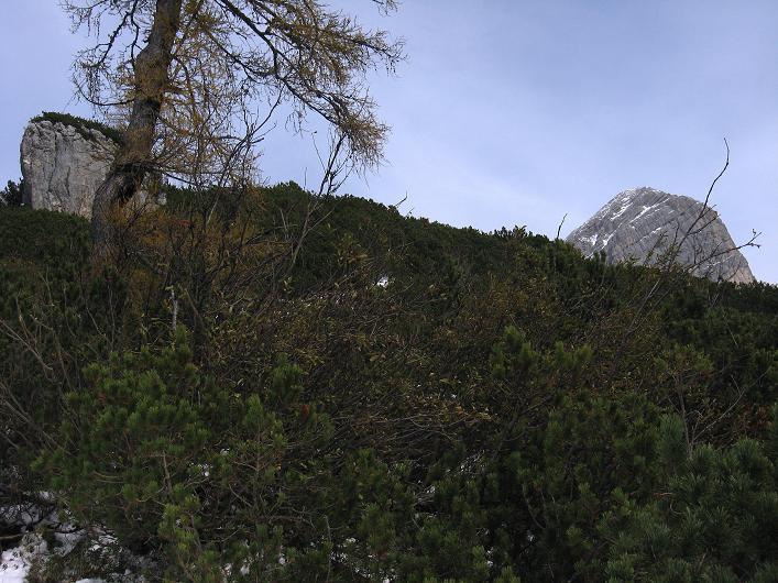 Foto: Andreas Koller / Schneeschuhtour / Über den Südwestgrat auf den Scheiblingstein (2197m) / Der Scheiblingstein zeigt sich / 25.10.2010 16:36:42