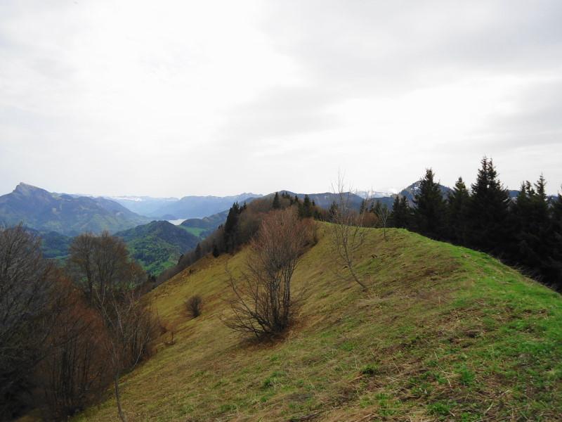 Foto: Günter Siegl / Wandertour / Filbling 1307m über Nordwestrücken / Am Ostkamm runter zum Filblingsee / 07.05.2015 11:36:19