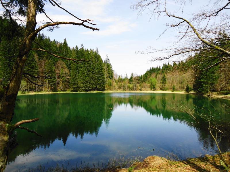 Foto: Günter Siegl / Wandertour / Filbling 1307m über Nordwestrücken / Filblingsee / 07.05.2015 11:34:39