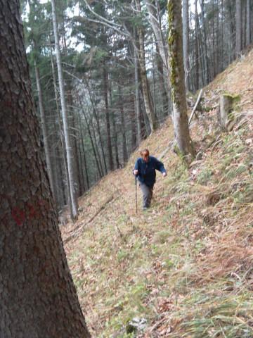 Foto: Wolfgang Lauschensky / Wandertour / Filbling 1307m: Runde über Westhang und NW-Rücken / beinahe weglose Querung verlangt Trittsicherheit / 16.11.2010 11:08:42