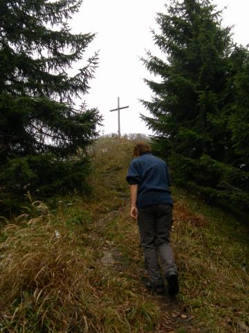 Foto: Wolfgang Lauschensky / Wandertour / Filbling 1307m: Runde über Westhang und NW-Rücken / Austritt aus dem Wald zum grasigen Gipfelhang / 16.11.2010 11:07:44