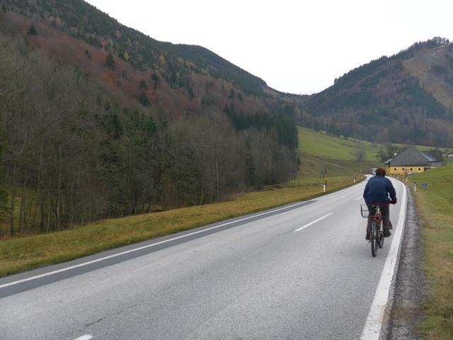 Foto: Wolfgang Lauschensky / Wandertour / Filbling 1307m: Runde über Westhang und NW-Rücken / mit dem Rad zurück nach Wald bei Faistenau / 16.11.2010 11:07:08
