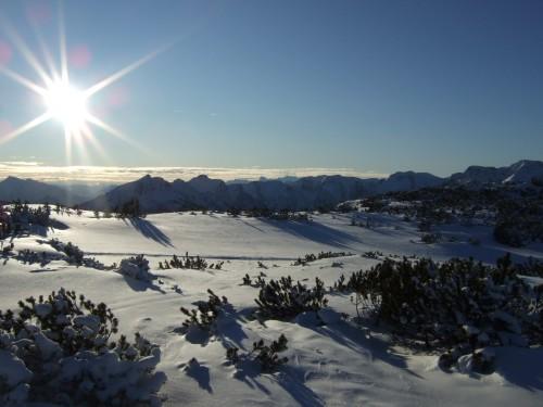 Foto: hofchri / Skitour / Schafkögel (1990 m) von Hinterstoder über Hutterer Höß / Aussicht vom Schafkögel / 19.11.2010 20:39:00