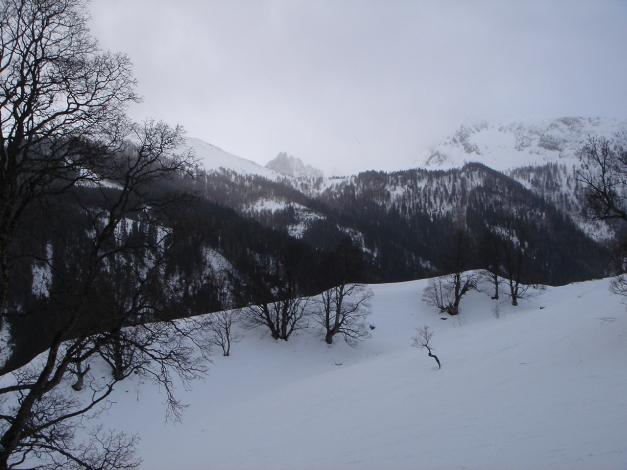 Foto: Manfred Karl / Skitour / Gebreinspitze, 2167 m / 08.01.2015 20:28:10