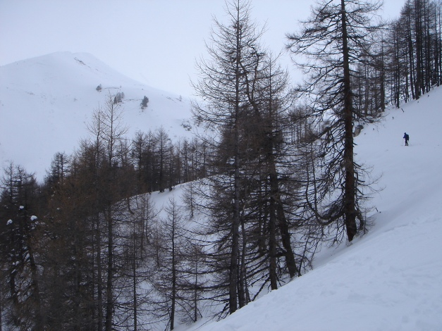 Foto: Manfred Karl / Skitour / Gebreinspitze, 2167 m / Am Weg zur Trimminger Alm / 08.01.2015 20:27:50