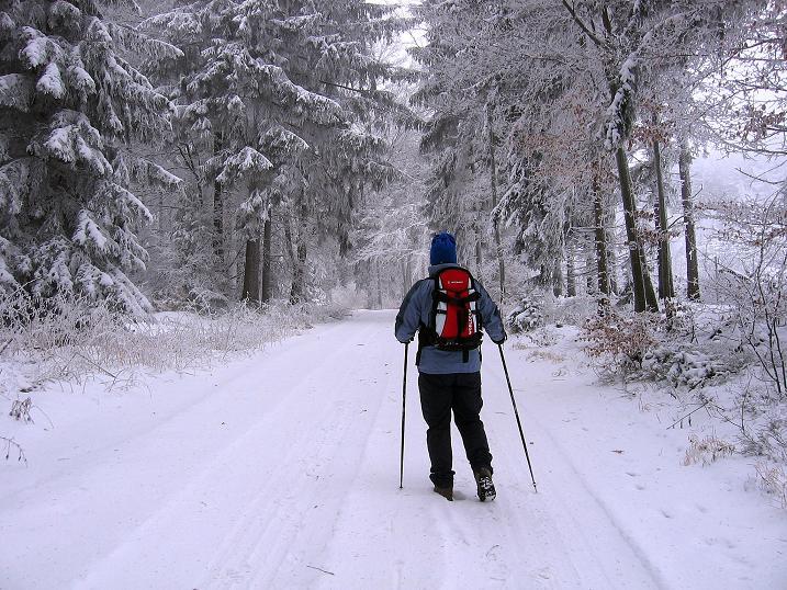 Klettersteig Niederösterreich : Klettersteige für groß und klein red bull