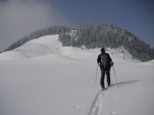 Foto: Wolfgang Lauschensky / Skitour / Kranzhorn 1368m / langer Rücken der Kranzhornalm / 04.02.2011 21:04:33