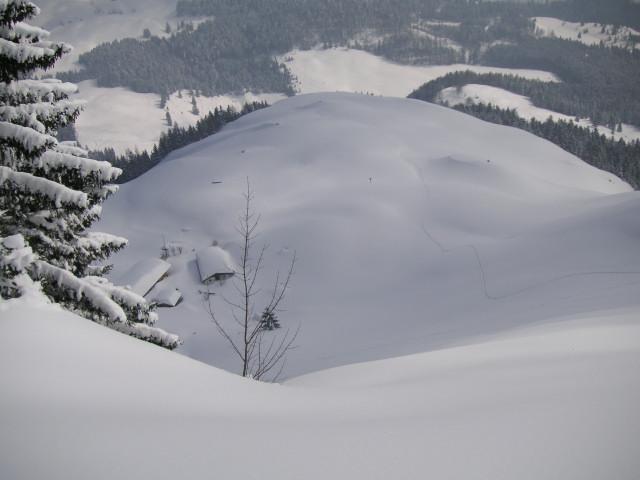 Foto: Wolfgang Lauschensky / Skitour / Kranzhorn 1368m / die schönen Kuppen und Rücken der Kranzhornalm aus der Gipfelschneise / 04.02.2011 21:04:08