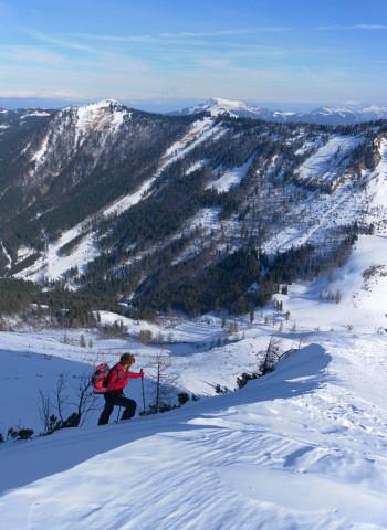 Foto: Wolfgang Lauschensky / Skitour / Gennerhorn Überquerung mit  Nordabfahrt  / Ausstieg aus der Querung, Königsberghorn / 11.02.2011 19:12:26