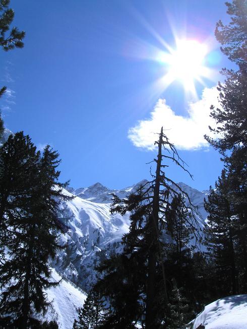 Foto: Andreas Koller / Ski Tour / Von Lüsens auf die Schöntalspitze (3008m) / 17.03.2011 20:53:40