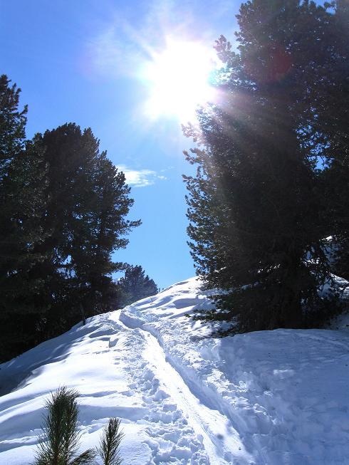 Foto: Andreas Koller / Ski Tour / Von Lüsens auf die Schöntalspitze (3008m) / 17.03.2011 20:53:08