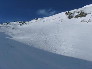 Foto: Datzberger Hans / Ski Tour / Lahnerleitenspitze und Hinkareck aus dem Radmertal / Lahnerleiten mit steilem Gipfelhang. / 02.02.2014 21:28:27