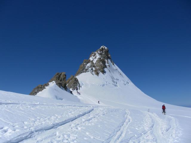 Foto: Wolfgang Lauschensky / Skitour / Hinter Fiescherhorn  4025m Überschreitung / Ostseite des Fieschersattels mit Großem Fiescherhorn / 30.04.2011 21:24:02