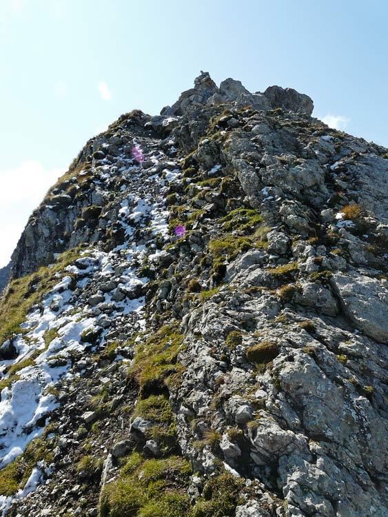 Foto: vince 51 / Wandertour / vom Spullersee auf die Obere Wildgrubenspitze und die Madlochspitze / Gipfelgrat Wildgrubenspitze / 30.04.2011 22:58:43