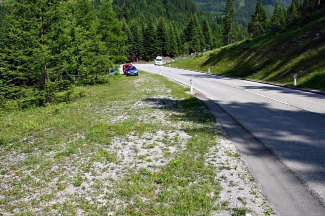 Foto: vince 51 / Wander Tour / durchs Rotlechtal auf den Loreakopf / Der Parkplatz / 08.06.2011 23:11:36