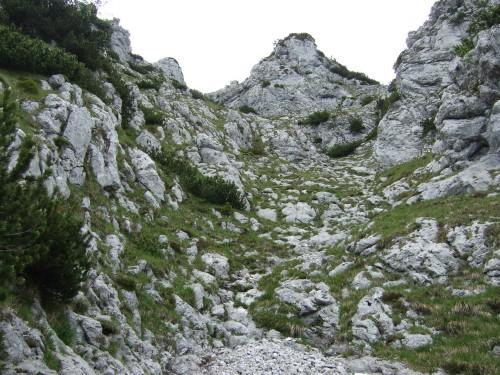 Foto: hofchri / Wandertour / Hochstaufen (1771 m) über Steinerne Jäger (I+) / Rinnen am Rand hochsteigen / 09.06.2011 21:42:09