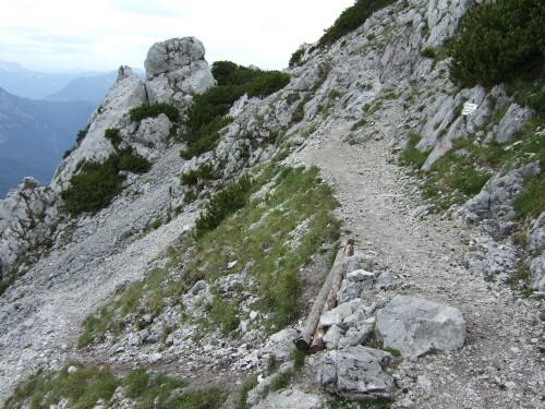 Foto: hofchri / Wandertour / Hochstaufen (1771 m) über Steinerne Jäger (I+) / Goldtropfsteig trifft auf Normalweg (rechts) / 09.06.2011 21:44:06