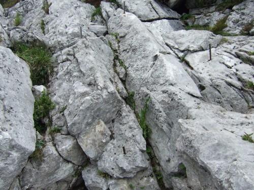 Foto: hofchri / Wandertour / Hochstaufen (1771 m) über Steinerne Jäger (I+) / mit leichten Kletterstellen (ausnahmsweise sogar mit Eisenstiften) / 09.06.2011 21:47:39