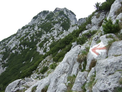 Foto: hofchri / Wandertour / Hochstaufen (1771 m) über Steinerne Jäger (I+) / Steig ist gut markiert / 09.06.2011 21:47:57