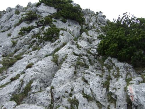 Foto: hofchri / Wandertour / Hochstaufen (1771 m) über Steinerne Jäger (I+) / Schrofengelände mit Klettereinlagen / 09.06.2011 21:48:24