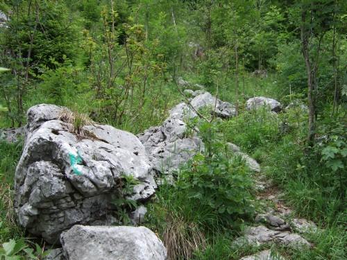 Foto: hofchri / Wandertour / Hochstaufen (1771 m) über Steinerne Jäger (I+) / Markierungen am Goldtropfsteig / 09.06.2011 21:34:43