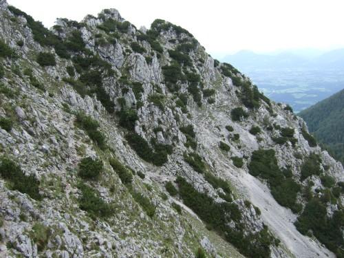 Foto: hofchri / Wandertour / Hochstaufen (1771 m) über Steinerne Jäger (I+) / Quergang mit kleinem Gegenanstieg / 09.06.2011 21:48:51