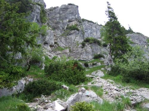 Foto: hofchri / Wandertour / Hochstaufen (1771 m) über Steinerne Jäger (I+) / langsam wirds alpin / 09.06.2011 21:39:39