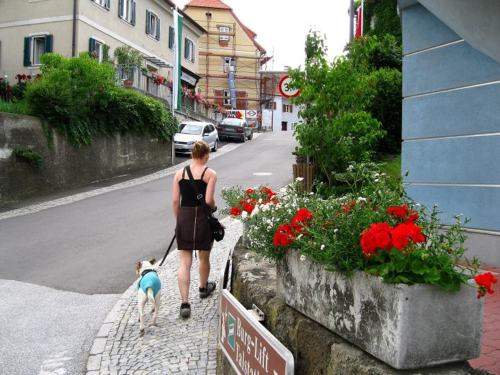 Klettersteig Riegersburg : Fotogalerie tourfotos fotos zur klettersteig tour leopold