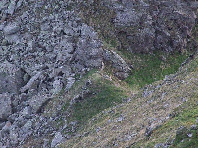 Foto: Datzi / Wandertour / Rundtour über die Wasserfallspitze (Biwak) Aufstieg Herzmaierkar - Abstieg Wildkar / Der Übergang zwischen Hinterer Wildkarstein und Wasserfallspitze (hier bei dieser Scharte führt der Anstieg über den grünen und der Abstieg über den Rot gezeichneten Weg vorbei) / 18.06.2011 16:07:31