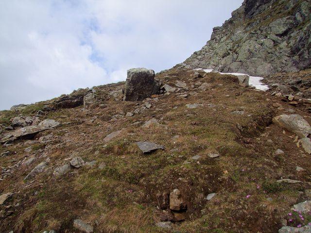 Foto: Datzi / Wandertour / Rundtour über die Wasserfallspitze (Biwak) Aufstieg Herzmaierkar - Abstieg Wildkar / Der Abstieg von der Wasserfallspitze, der Wiesen - bzw Schutthang bis zum Einsteig in die Schutt bzw. Schotterrinne / 18.06.2011 16:07:47