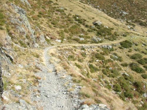 Foto: hofchri / Mountainbiketour / Strickberg (2553 m) und Marchkinkele (2545 m) von Winnebach / Bilder sagen mehr als Worte / 19.06.2011 22:06:16