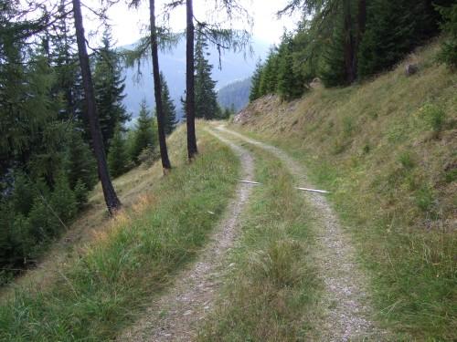 Foto: hofchri / Mountainbiketour / Strickberg (2553 m) und Marchkinkele (2545 m) von Winnebach / immer noch pipifein / 19.06.2011 22:07:16