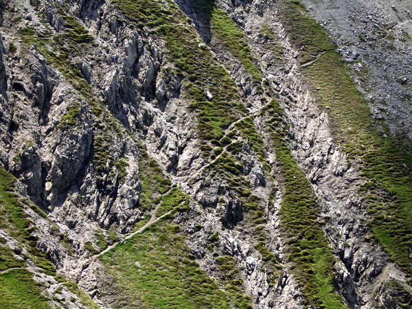 Foto: vince 51 / Wander Tour / Saladinaspitze/Fensterlewand / zu querende Rinnen in der NW-Flanke / 01.07.2011 22:38:46