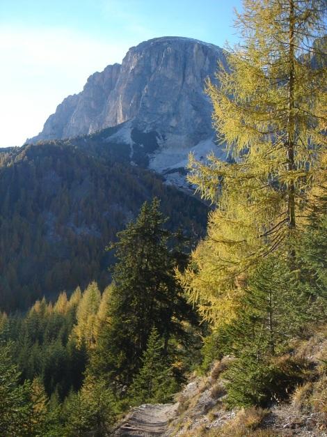 Foto: Manfred Karl / Wander Tour / Rundwanderung Col Pradat / 02.07.2011 14:44:23