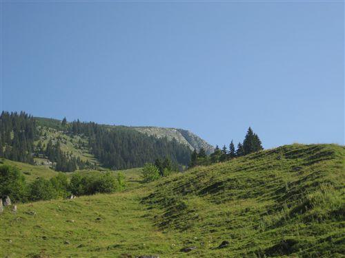 Foto: Zwerg / Wandertour / Gamsfeldrunde von Russbach über Traunwandalm  / 04.08.2011 10:27:27