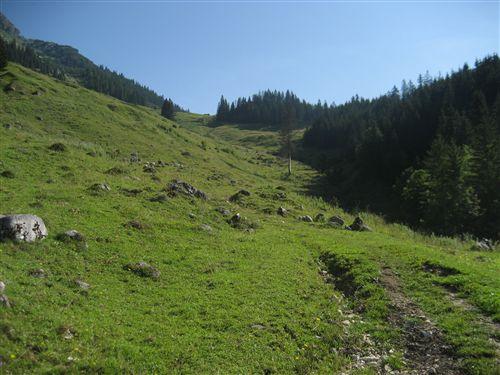 Foto: Zwerg / Wandertour / Gamsfeldrunde von Russbach über Traunwandalm  / 04.08.2011 10:27:33