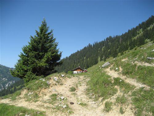 Foto: Zwerg / Wandertour / Gamsfeldrunde von Russbach über Traunwandalm  / 04.08.2011 10:28:40