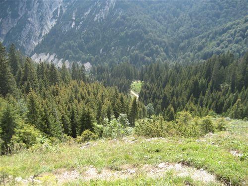 Foto: Zwerg / Wandertour / Gamsfeldrunde von Russbach über Traunwandalm  / 04.08.2011 10:31:00