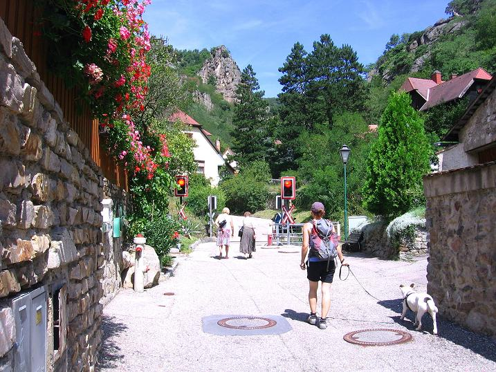 Klettersteig Wachau : Fotogalerie tourfotos fotos zur klettersteig tour