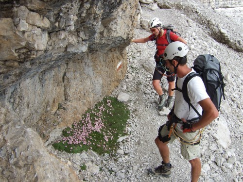 """Foto: hofchri / Klettersteigtour / Brenta-Durchquerung  via """"Sent. Alfredo Benini"""" (Bocchette Weg – I. Etappe, 2905 m) / 19.08.2011 14:19:31"""