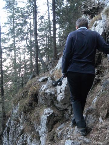 Foto: Wolfgang Lauschensky / Wandertour / Dürreckberg 1785m   / exponierter steiler Waldanstieg / 30.11.2011 00:32:52