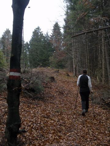 Foto: Wolfgang Lauschensky / Wandertour / Strumberg Überschreitung / 'Gipfelsturm' / 06.12.2011 18:18:12